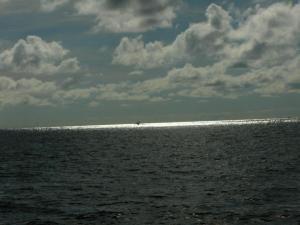 Bohol sea