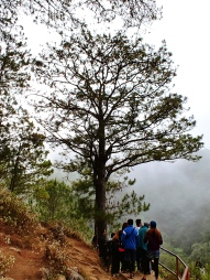 Trail through the Echo Valley